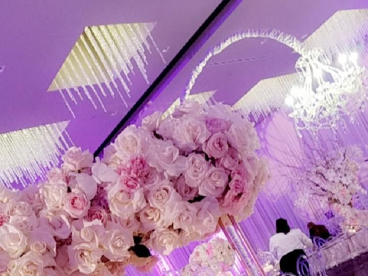 Tmx Wedding Pink 3 51 124679 Los Angeles, CA wedding venue