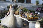 Tuscan Catering image