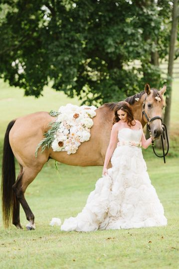 bbb bride walking with horse 51 1030779 158732520385202