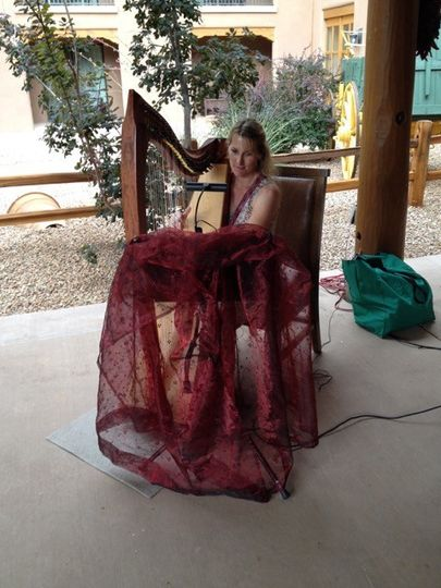 Harpist at a resort/hotel