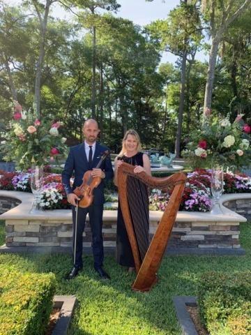 Violin/Harp duet