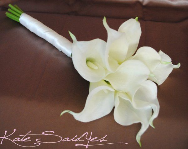 Tmx 1295227087499 Creamcallalily2 Boston wedding florist