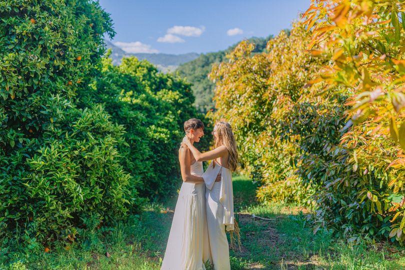 Orchards shot