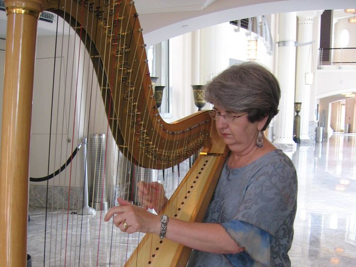 Tmx 1396046200372 Susan At Harp 00 Hurst wedding ceremonymusic