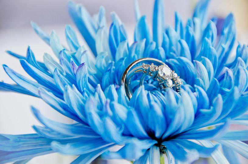 aa wedding album0018