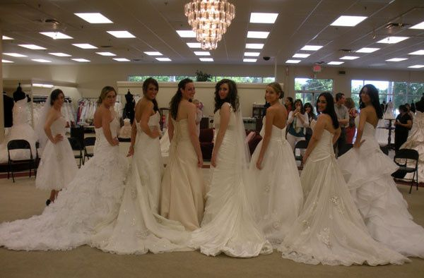 dd50474f88a The Bridal Boutique NC Group photo of brides Group photo of brides Bridal  gowns on display