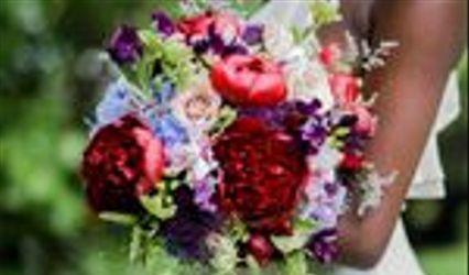 Violet Gardens Floral Designs 1