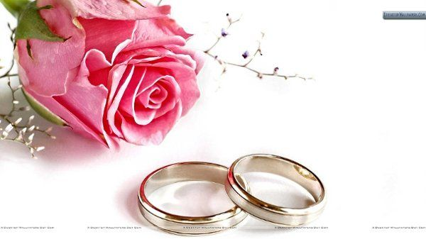 A-VERY-SPECIAL-WEDDING