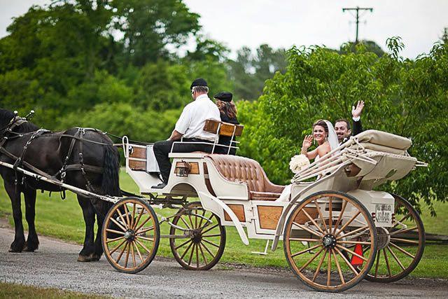 horse carriage nashville weddin