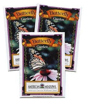 Butterfly Garden Seed Packet