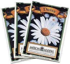 Daisy Seed Packet