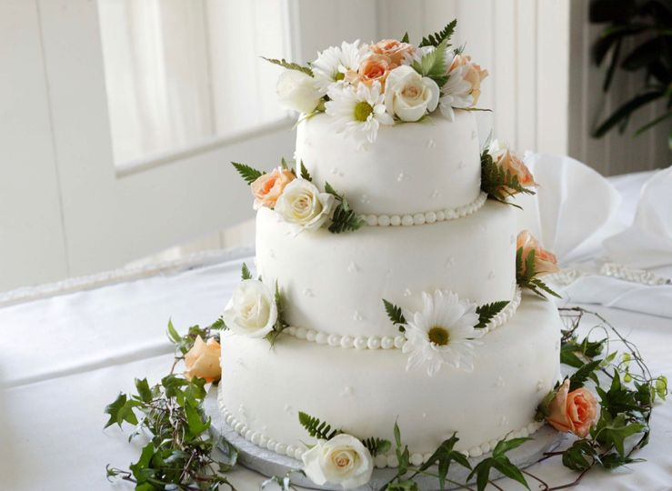 white icing cover cake 1702373 51 1972979 159173418727113