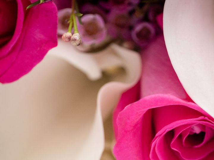Tmx Van 2458 51 982979 Billings, MT wedding photography