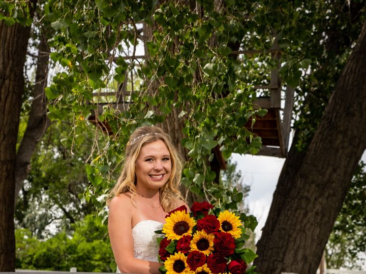 Tmx Van 44 51 982979 158070525922667 Billings, MT wedding photography