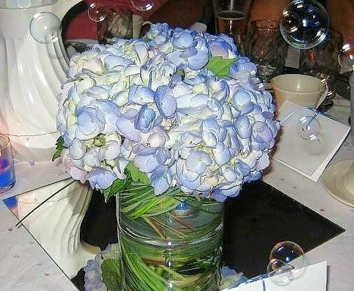 Reception Centerpiece for Guest Table: stunning blue hydrangeas in a low glass cylinder lined with...