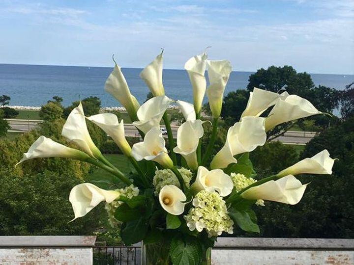 Tmx 1520901061 17e1d20622800db4 1520901060 Babfc9018df3a684 1520901058361 13 Friday Villa Terr Starkville wedding florist