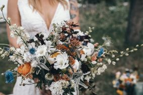 Mountain Thyme Events