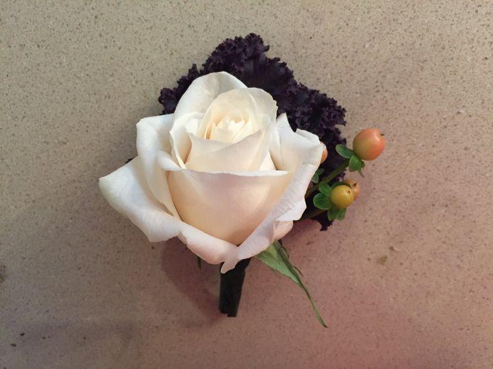 Kale leaf/white rose