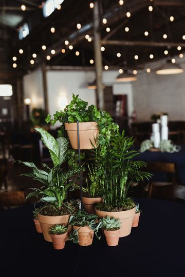 Houseplant Tablescape