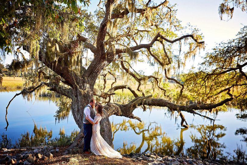 Edisto Island Wedding Oak Tree