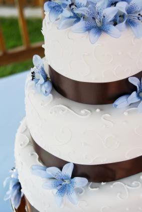 Tmx 1239461758510 Flash17 Grand Ledge wedding planner