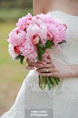 bride holding bouquet ayp1501412