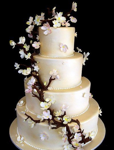 Tmx 1357790865269 IvoryAppleBlossoms San Antonio, TX wedding cake