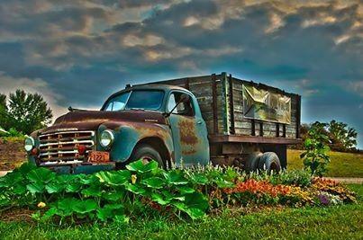 Whistler's 1949 Studebaker Truck - Photo Credit to Eric Zahn, Prizm Pro Photography
