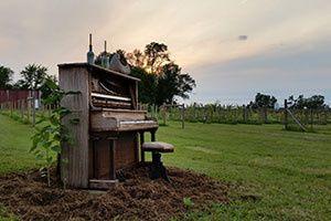 Tmx 1426103141644 Piano Hortonville, WI wedding venue