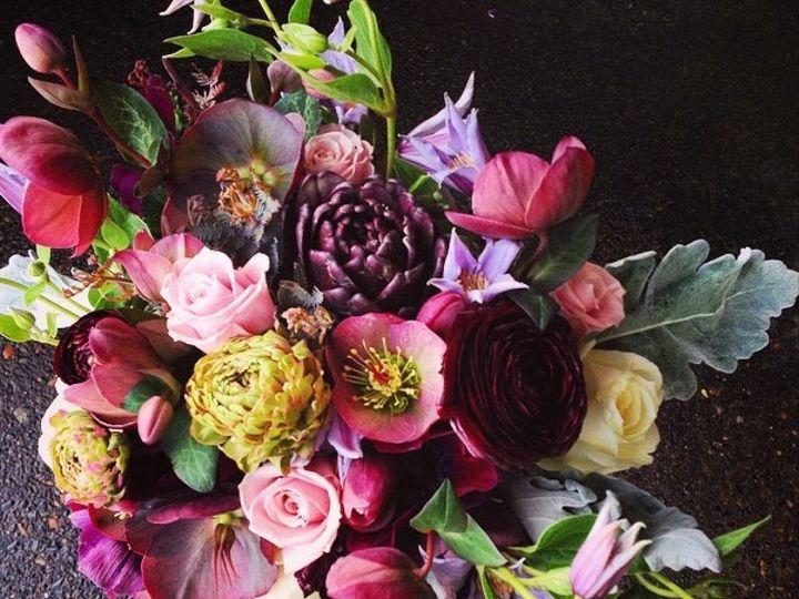 Tmx Img 1012 51 1040289 Portland, OR wedding florist
