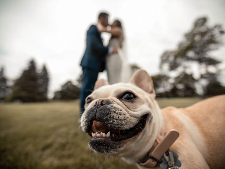 Tmx Filecr2 56180 51 1031289 159052432148463 Crystal Lake, IL wedding photography