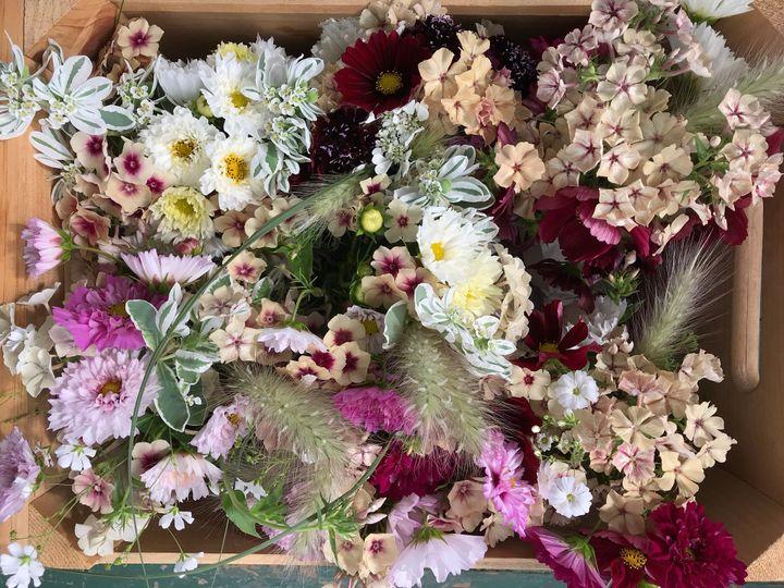 Tmx Img 5908 51 1891289 1571846111 Moretown, VT wedding florist