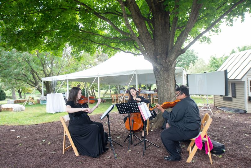 String quartet
