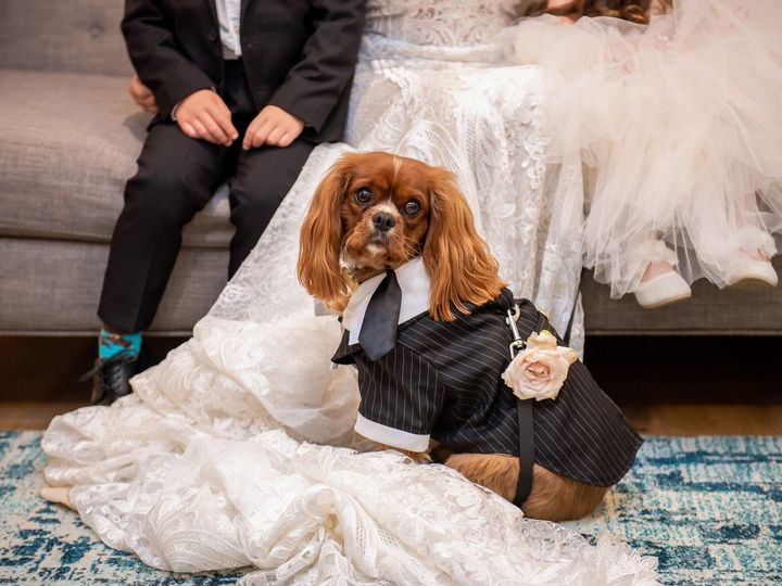 Tmx Lauberge Wedding 556 Of 1377 2 51 85289 1568210711 Del Mar, CA wedding venue