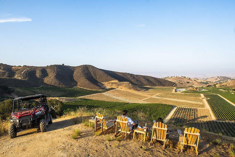 Vineyard viewpoint