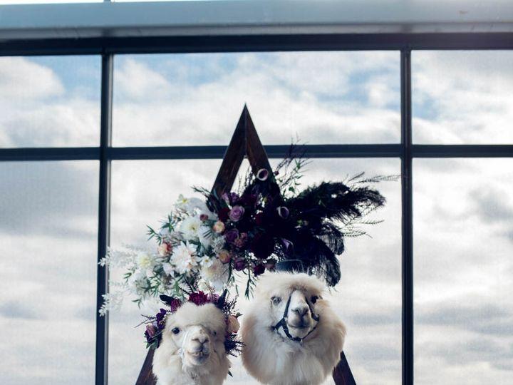 Tmx Crystalgenesphotography201020 150230 51 1916389 162352476624220 Vancouver, WA wedding planner