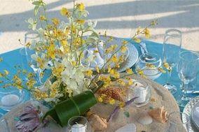 Bahamas Wedding Connoisseurs