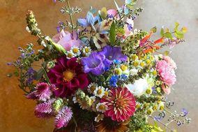 Allora Farm & Flowers