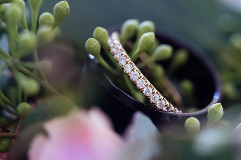 Sparkle - Herring Photography