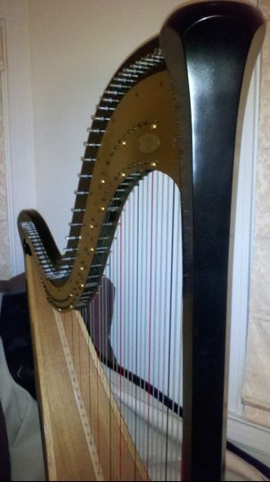 Made of wood, harps come in a variety of colors: ebony, mahogany, natural, walnut, tigerwood, &...