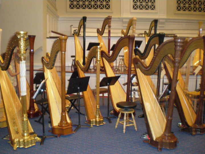 Harps ready for a concert!