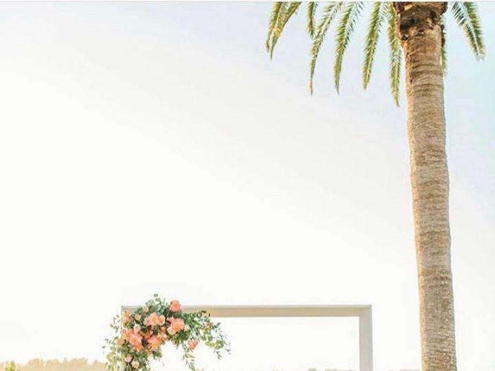 Tmx Img 0451 51 904589 158571002879330 Sarasota, FL wedding florist