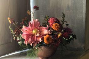 Poppy Pod Floral Design