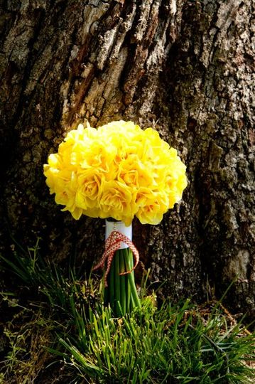 PetiteFleurArtworksTulsaPhotography1flowers