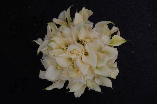Tmx 1305186915033 PetiteFleurbyTheFrenchBouquetTulsaOKWeddingFloristFotografieSturm2 Tulsa wedding florist