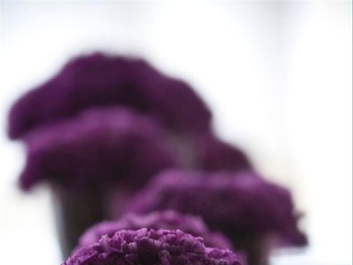 Tmx 1307613467285 PetiteFleurbyTheFrenchBouquetOrganicCenterpiecesLauraVogtPhotography2 Tulsa wedding florist