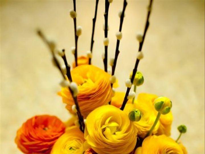 Tmx 1322672481685 PetiteFleurbyTheFrenchBouquetOrganicCenterpiecesArtworksTulsaPhotography2flowers Tulsa wedding florist