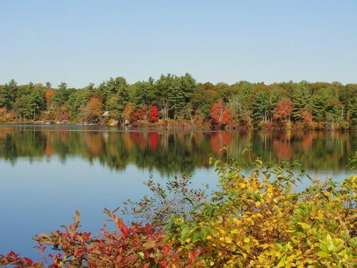 Peak foliage on Loon Pond