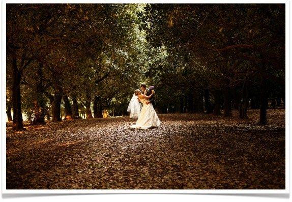 couple woods