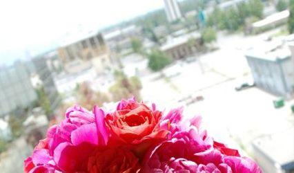 Blushing Blooms 1